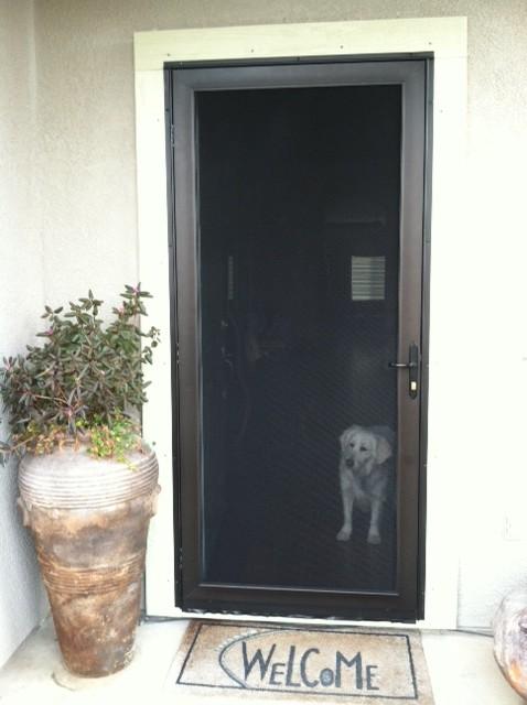Security screen doors residential